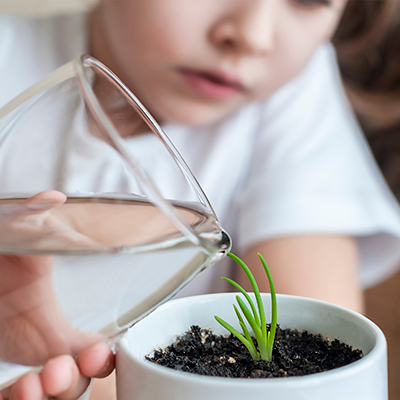 boy watering plant | Rothewood Academy