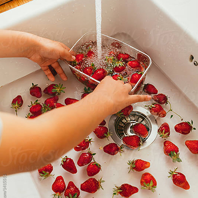 child washing strawberries in the sink | Rothewood Academy