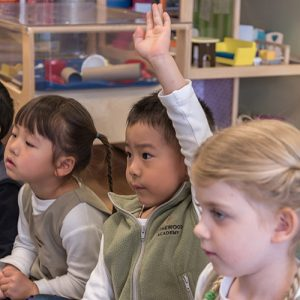 The Importance of a Holistic Approach to Learning in Daycare Centres | Child is Raising Hand at Rothewood Academy